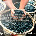 acai juice diet recipes for weight loss for teens